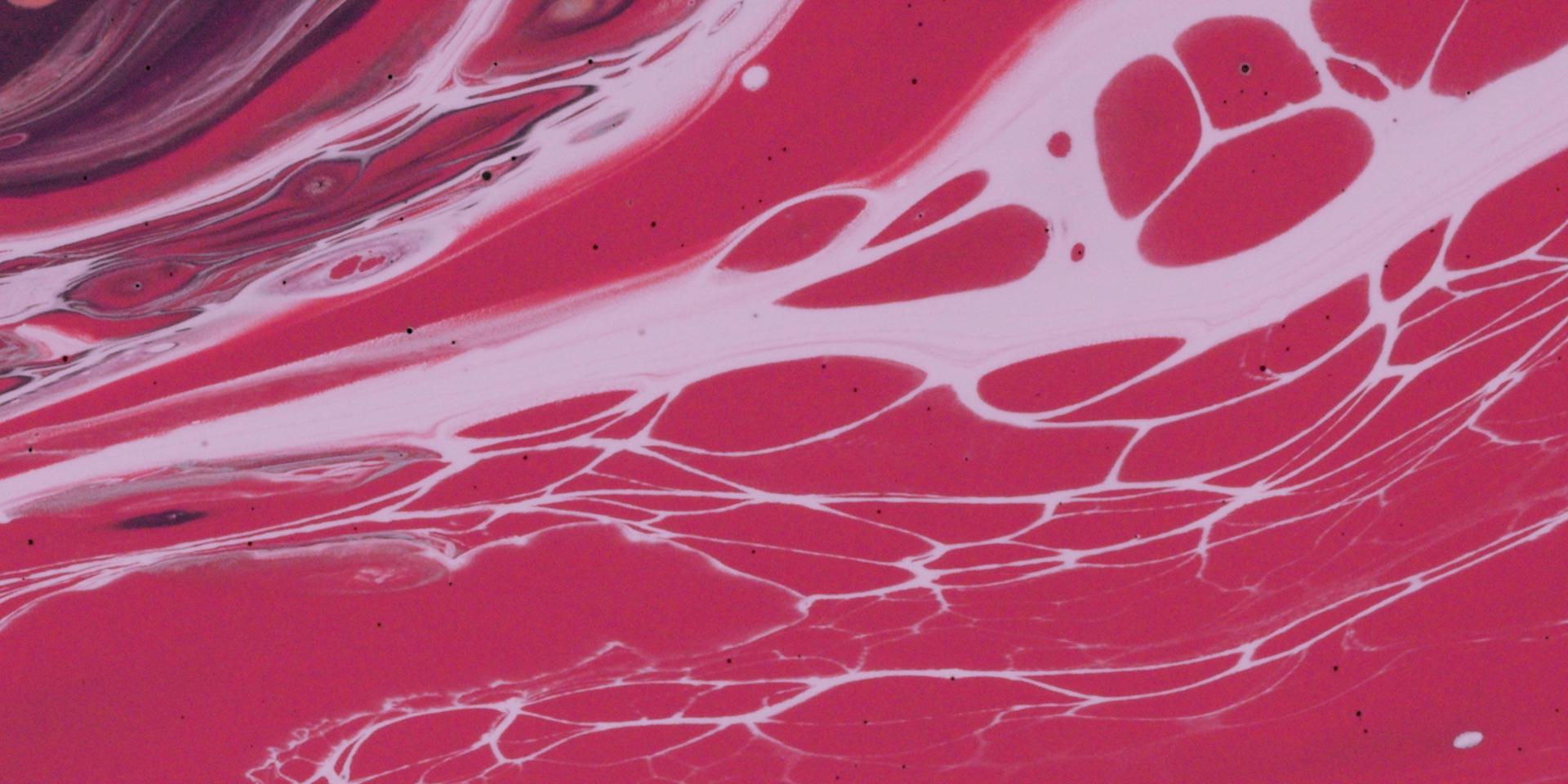 Paints – Draft 03.00_00_30_12.Still023